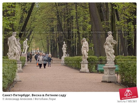 Санкт-Петербург. Весна в Летнем саду, эксклюзивное фото № 165561, снято 20 мая 2006 г. (c) Александр Алексеев / Фотобанк Лори