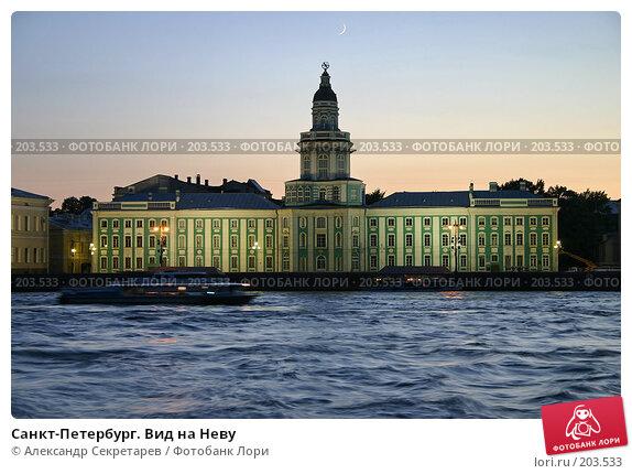 Санкт-Петербург. Вид на Неву, фото № 203533, снято 9 июня 2005 г. (c) Александр Секретарев / Фотобанк Лори