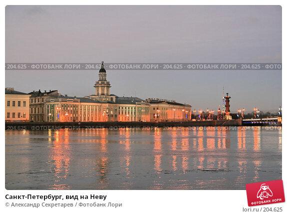 Санкт-Петербург, вид на Неву, фото № 204625, снято 22 декабря 2007 г. (c) Александр Секретарев / Фотобанк Лори