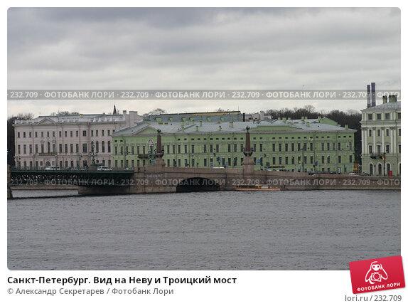 Санкт-Петербург. Вид на Неву и Троицкий мост, фото № 232709, снято 10 мая 2005 г. (c) Александр Секретарев / Фотобанк Лори