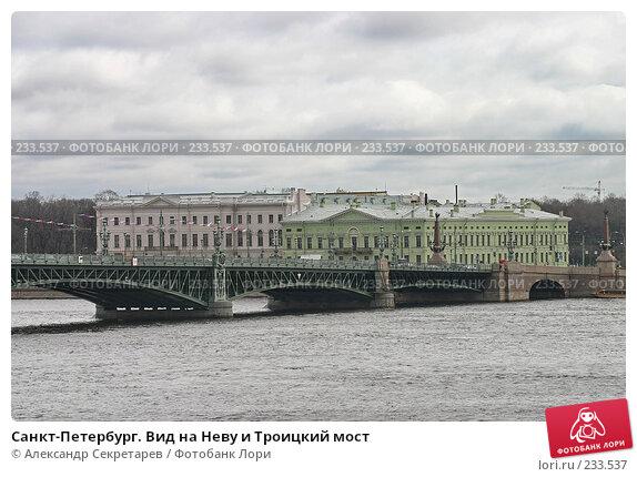 Купить «Санкт-Петербург. Вид на Неву и Троицкий мост», фото № 233537, снято 10 мая 2005 г. (c) Александр Секретарев / Фотобанк Лори