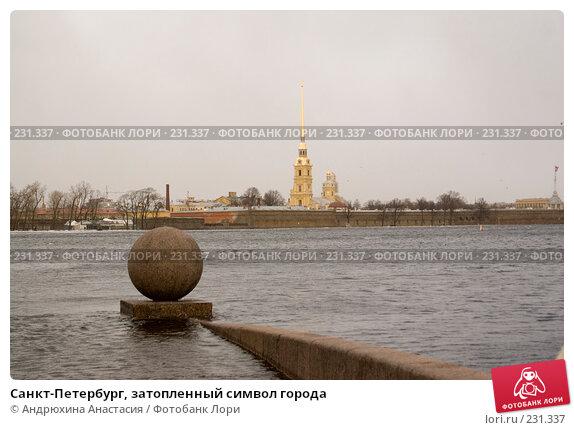 Санкт-Петербург, затопленный символ города, фото № 231337, снято 3 февраля 2008 г. (c) Андрюхина Анастасия / Фотобанк Лори