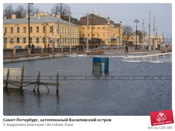 Санкт-Петербург, затопленный Василевский остров, фото № 231341, снято 3 февраля 2008 г. (c) Андрюхина Анастасия / Фотобанк Лори