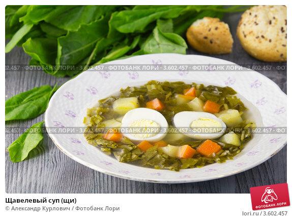 Купить «Щавелевый суп (щи)», эксклюзивное фото № 3602457, снято 31 мая 2012 г. (c) Александр Курлович / Фотобанк Лори