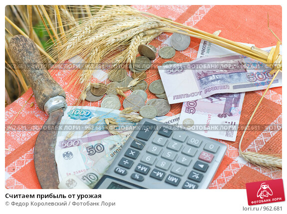 Купить «Считаем прибыль от урожая», фото № 962681, снято 6 июля 2009 г. (c) Федор Королевский / Фотобанк Лори