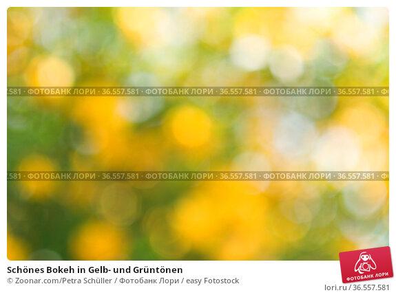 Schönes Bokeh in Gelb- und Grüntönen. Стоковое фото, фотограф Zoonar.com/Petra Schüller / easy Fotostock / Фотобанк Лори