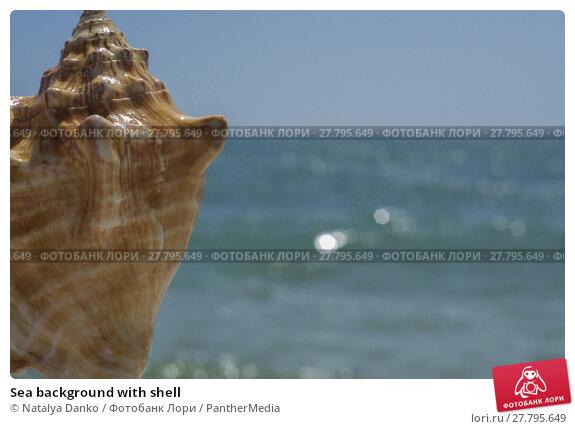 Купить «Sea background with shell», фото № 27795649, снято 19 октября 2018 г. (c) PantherMedia / Фотобанк Лори