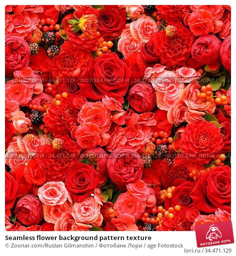 Seamless flower background pattern texture. Стоковое фото, фотограф Zoonar.com/Ruslan Gilmanshin / age Fotostock / Фотобанк Лори