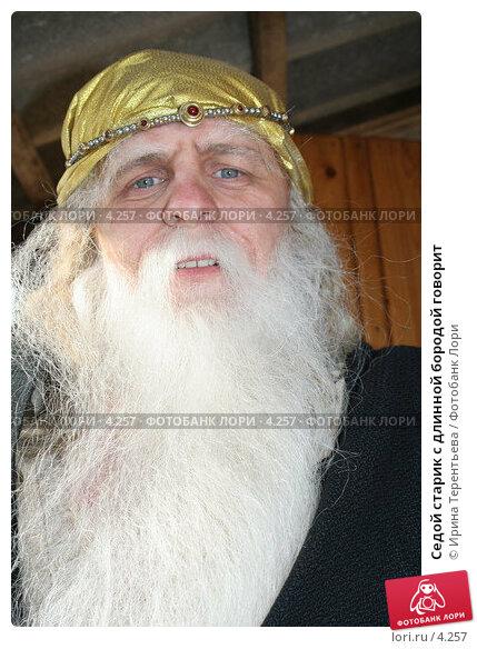 Маленький старичок с длинной седой бородой сидел на