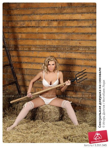 Купить «Сексуальная девушка на сеновале», фото № 3551945, снято 14 апреля 2012 г. (c) Игорь Долгов / Фотобанк Лори