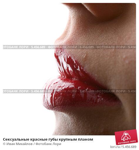 половые губы крупным планом. подборка 15