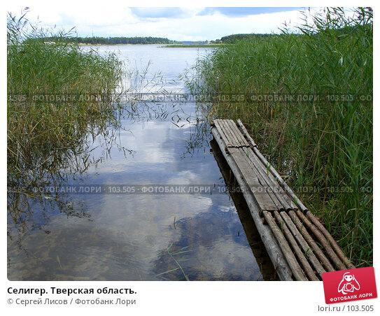 Селигер. Тверская область., фото № 103505, снято 21 июля 2017 г. (c) Сергей Лисов / Фотобанк Лори