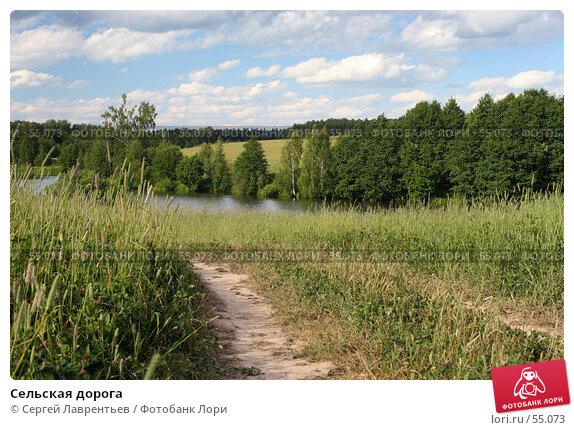 Сельская дорога, фото № 55073, снято 22 июня 2007 г. (c) Сергей Лаврентьев / Фотобанк Лори
