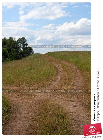 Сельская дорога, фото № 224037, снято 22 июня 2007 г. (c) Сергей Лаврентьев / Фотобанк Лори