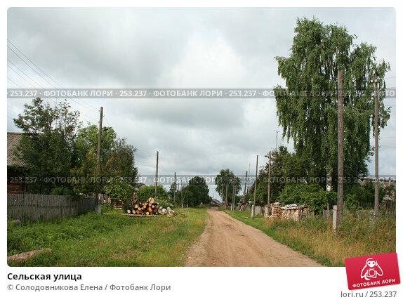 Купить «Сельская улица», эксклюзивное фото № 253237, снято 25 июля 2006 г. (c) Солодовникова Елена / Фотобанк Лори