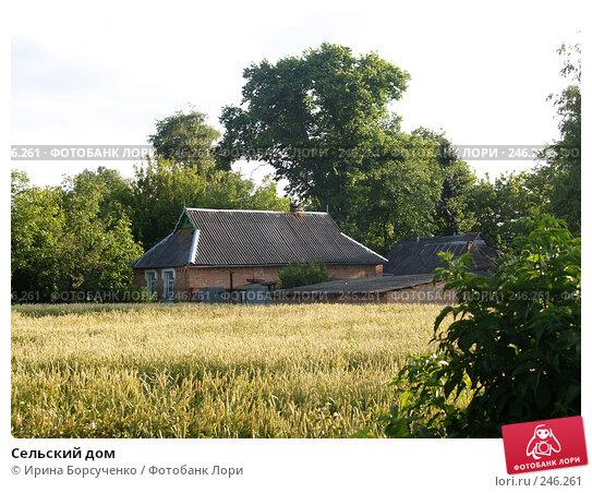 Сельский дом, фото № 246261, снято 22 июня 2007 г. (c) Ирина Борсученко / Фотобанк Лори