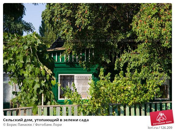 Сельский дом, утопающий в зелени сада, фото № 126209, снято 18 июля 2007 г. (c) Борис Панасюк / Фотобанк Лори
