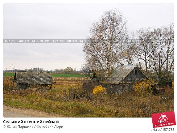 Купить «Сельский осенний пейзаж», фото № 157785, снято 21 октября 2007 г. (c) Юлия Паршина / Фотобанк Лори