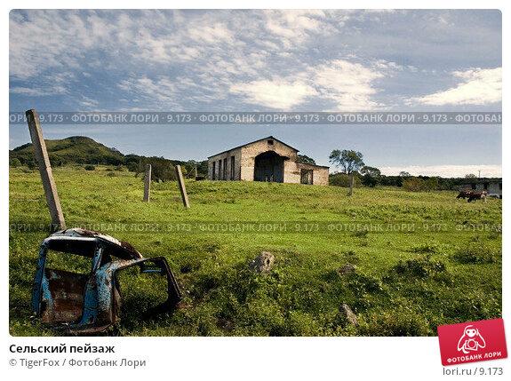 Сельский пейзаж, фото № 9173, снято 10 сентября 2006 г. (c) TigerFox / Фотобанк Лори