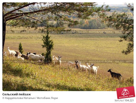 Сельский пейзаж, фото № 104221, снято 23 июня 2017 г. (c) Кардаполова Наталья / Фотобанк Лори