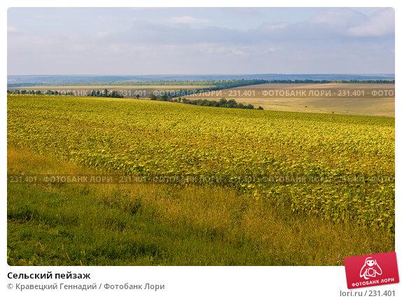 Сельский пейзаж, фото № 231401, снято 3 сентября 2005 г. (c) Кравецкий Геннадий / Фотобанк Лори