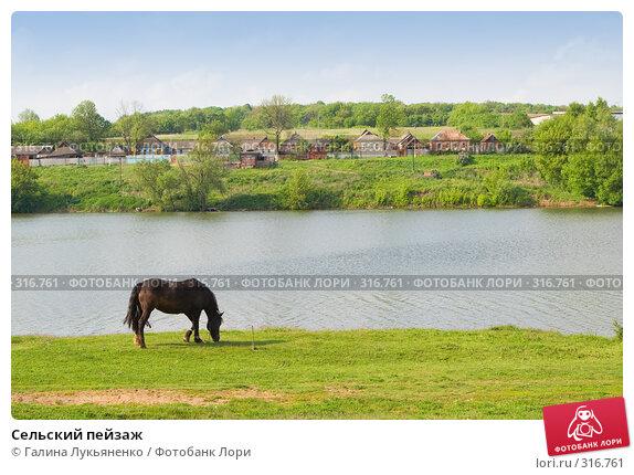Сельский пейзаж, фото № 316761, снято 17 мая 2008 г. (c) Галина Лукьяненко / Фотобанк Лори