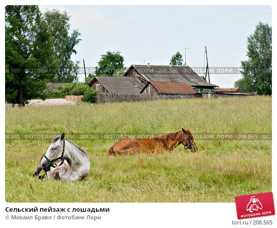 Сельский пейзаж с лошадьми, фото № 208565, снято 18 июня 2007 г. (c) Михаил Браво / Фотобанк Лори