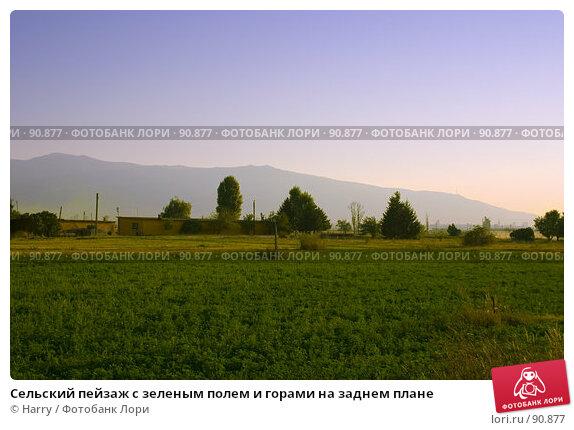 Купить «Сельский пейзаж с зеленым полем и горами на заднем плане», фото № 90877, снято 17 августа 2007 г. (c) Harry / Фотобанк Лори