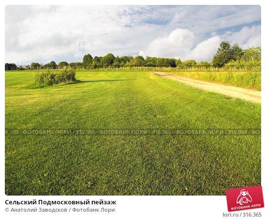 Сельский Подмосковный пейзаж, фото № 316365, снято 11 июля 2004 г. (c) Анатолий Заводсков / Фотобанк Лори