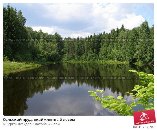 Сельский пруд, окаймленный лесом, фото № 17709, снято 22 июня 2006 г. (c) Сергей Ксейдор / Фотобанк Лори