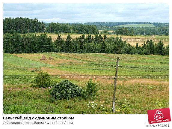 Сельский вид с одиноким столбом, эксклюзивное фото № 303921, снято 25 июля 2006 г. (c) Солодовникова Елена / Фотобанк Лори