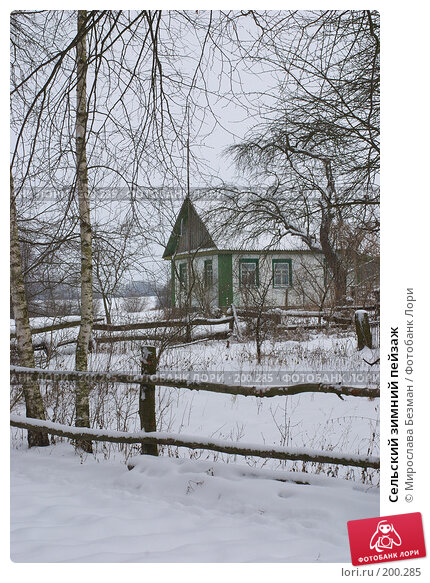 Сельский зимний пейзаж, фото № 200285, снято 23 августа 2017 г. (c) Мирослава Безман / Фотобанк Лори
