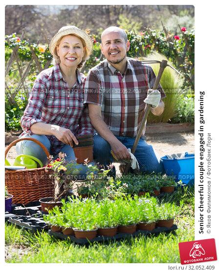 Senior cheerful couple engaged in gardening. Стоковое фото, фотограф Яков Филимонов / Фотобанк Лори