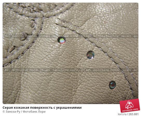 Купить «Серая кожаная поверхность с украшениями», фото № 283881, снято 9 мая 2008 г. (c) Заноза-Ру / Фотобанк Лори