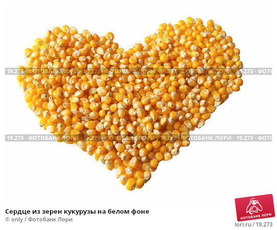 Купить «Сердце из зерен кукурузы на белом фоне», фото № 19273, снято 26 января 2007 г. (c) only / Фотобанк Лори