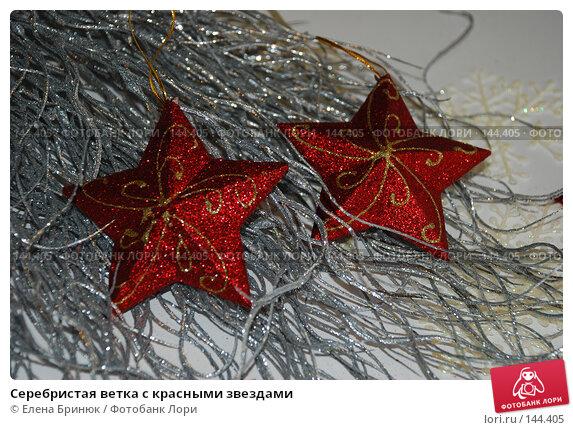Серебристая ветка с красными звездами, фото № 144405, снято 10 декабря 2007 г. (c) Елена Бринюк / Фотобанк Лори