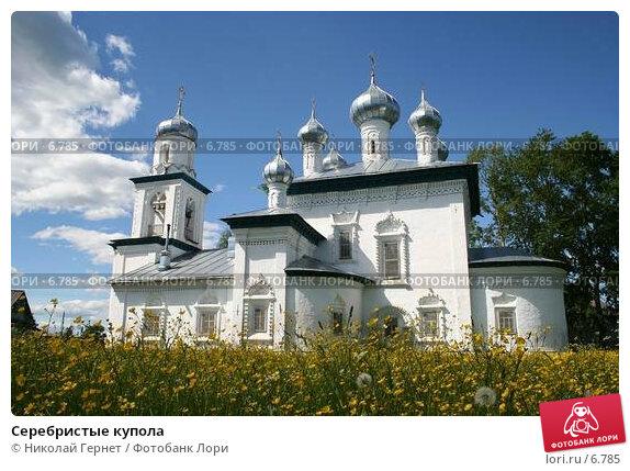 Серебристые купола, фото № 6785, снято 17 июня 2006 г. (c) Николай Гернет / Фотобанк Лори