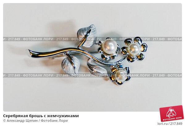 Купить «Серебряная брошь с жемчужинами», эксклюзивное фото № 217849, снято 7 марта 2008 г. (c) Александр Щепин / Фотобанк Лори