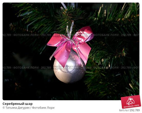Серебряный шар, фото № 292789, снято 15 января 2008 г. (c) Татьяна Дигурян / Фотобанк Лори