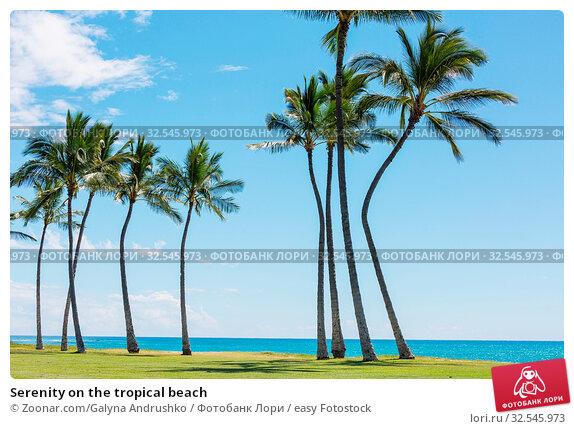 Купить «Serenity on the tropical beach», фото № 32545973, снято 7 декабря 2019 г. (c) easy Fotostock / Фотобанк Лори