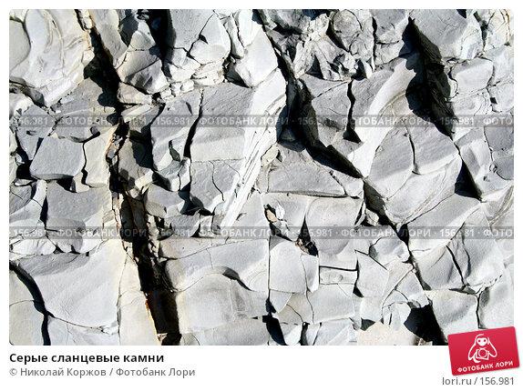 Серые сланцевые камни, фото № 156981, снято 29 июля 2006 г. (c) Николай Коржов / Фотобанк Лори