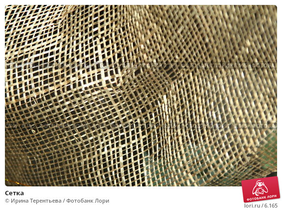 Сетка, эксклюзивное фото № 6165, снято 21 января 2006 г. (c) Ирина Терентьева / Фотобанк Лори