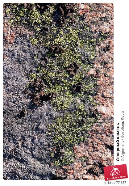 Северный камень, фото № 77357, снято 19 августа 2007 г. (c) Argument / Фотобанк Лори