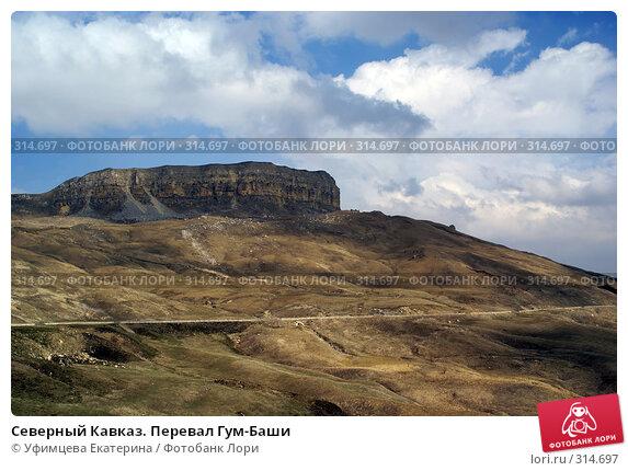 Северный Кавказ. Перевал Гум-Баши, фото № 314697, снято 29 марта 2017 г. (c) Уфимцева Екатерина / Фотобанк Лори