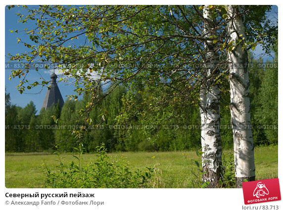 Северный русский пейзаж, фото № 83713, снято 7 августа 2007 г. (c) Александр Fanfo / Фотобанк Лори