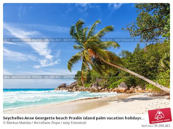 Seychelles Anse Georgette beach Praslin island palm vacation holidays... Стоковое фото, фотограф Markus Mainka / easy Fotostock / Фотобанк Лори