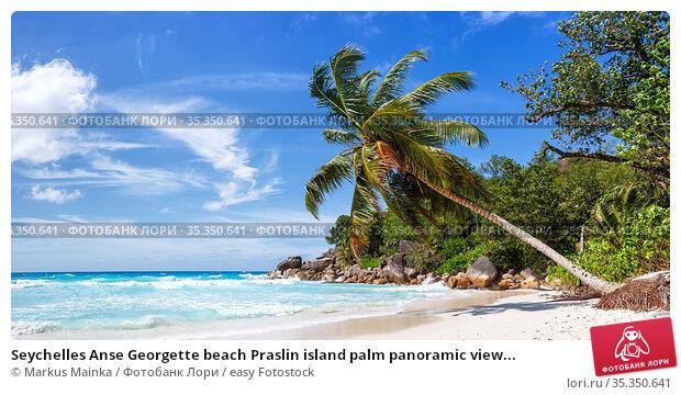 Seychelles Anse Georgette beach Praslin island palm panoramic view... Стоковое фото, фотограф Markus Mainka / easy Fotostock / Фотобанк Лори