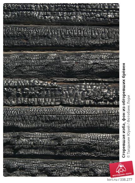 Сгоревшая изба, фон из обгоревших брёвен, фото № 338277, снято 18 июня 2008 г. (c) Талдыкин Юрий / Фотобанк Лори