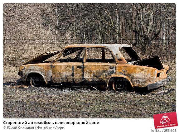Сгоревший автомобиль в лесопарковой зоне, фото № 253605, снято 30 марта 2008 г. (c) Юрий Синицын / Фотобанк Лори