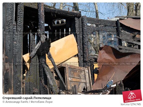 Сгоревший сарай.Пепелище, фото № 274745, снято 19 января 2017 г. (c) Александр Fanfo / Фотобанк Лори